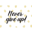 Never give up inscription Greeting card with vector image vector image