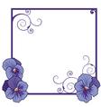 violet pansies vector image