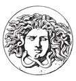 antique patera medusa head is design comes from vector image vector image