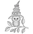 doodle coloring book page owl wearing halloween vector image vector image