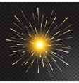 Festive Golden Firework Salute Burst on vector image