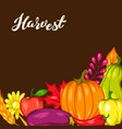 harvest festival background with fruits and vector image vector image