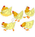 set of hens and chickens vector image