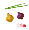 Onion vegetable with sprouted green leaves icon vector image vector image