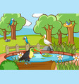 scene with many birds in park vector image