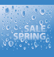 water droplets on glass vector image vector image