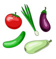 a set of vegetable icons of tomato cucumber vector image