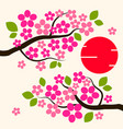 cherry blossom background sakura flowers pink on vector image