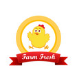emblem with cute chicken vector image