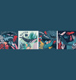 four underwater marine biology posters or cards vector image