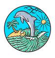 dolphin beach vector image