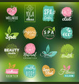 health and beauty care logtypes spayoga