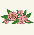 peony design hand drawn vector image vector image