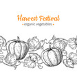pumpkin seamless pattern hand drawn vector image