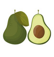 cartoon avocados whole and cut avocado isolated vector image
