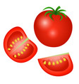 a tomato half of a tomato and a slice isolated on vector image