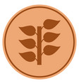 flora plant bronze coin vector image vector image