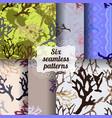 set of botanic seamless patterns vector image