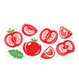 collection fresh red tomatoes half slice of vector image