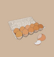 egg box with fresh chicken eggs egg vector image vector image