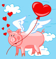 Flying pig in love vector image vector image