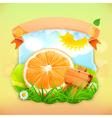 Fresh fruit label orange background for making vector image