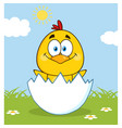 happy yellow chick character vector image vector image