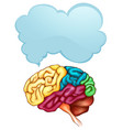 human brain and speech bubble template vector image vector image