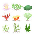 set of underwater plants funny vector image vector image