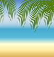 Beach background with sea sand and palm trees vector image