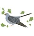 a cuckoo vector image vector image