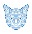 abstract head cat consisting of vector image