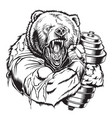bear gym dumbell vector image vector image