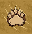 brown bear paw with claws vector image vector image