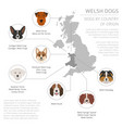 dogs by country of origin walsh dog breeds vector image vector image