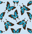 seamless pattern with hand drawn colored papilio vector image vector image