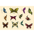 Set of colorful butterflyes vector image vector image