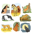 set wild and home animals hand drawn vector image