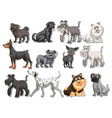 Sticker set of pet dogs vector image