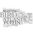 a rare bird indeed for bird watchers the atlantic vector image