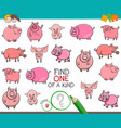 find one of a kind with funny pig characters vector image vector image