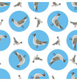 watercolor sea gull seamless pattern hand drawn vector image