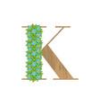 wooden leaves letter k vector image vector image