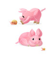 cartoon animal clip art vector image