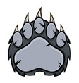 gray bear paw with claws vector image vector image
