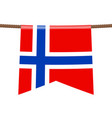 norway national flags hangs on rope vector image vector image