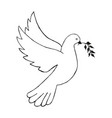 dove with olive branch hand draw vector image