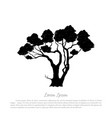 black silhouette a tree on white background vector image vector image