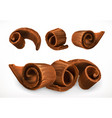 chocolate shavings 3d realistic icon vector image vector image