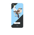common starling kookaburra cockatoo birds cartoon vector image vector image